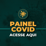 destaques_painelcovid_ses